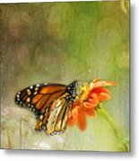 Butterfly And Bokeh Metal Print