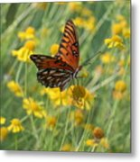Butterfly And Flowers Metal Print