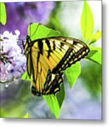 Butterfly And Lilacs Metal Print