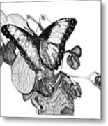 Butterfly And Orchids Metal Print