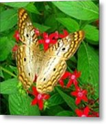 Butterfly And Red Star Sprig Metal Print