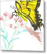 Butterfly At Play Metal Print