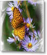 Butterfly Bliss Metal Print