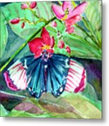 Butterfly Buffet Metal Print