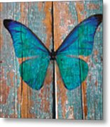 Butterfly Exhibition 1 Metal Print