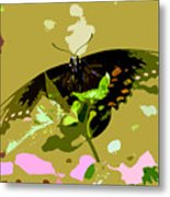 Butterfly In Color Metal Print