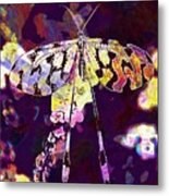 Butterfly Insect Black White  Metal Print