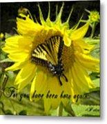 Butterfly Monarch Ba Metal Print