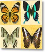Four Butterfly Montage Metal Print