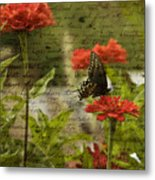 Butterfly Notes Metal Print