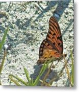 Butterfly On Beach Metal Print