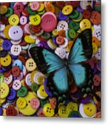 Butterfly On Buttons Metal Print