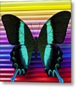 Butterfly On Colored Pencils Metal Print