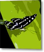 Butterfly On Green Metal Print