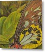 Butterfly On Leaves Metal Print