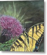 Butterfly On Thistle 2010 Metal Print