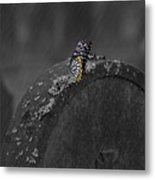 Butterfly On Tombstone Metal Print