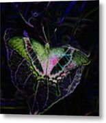 Butterfly Rws Work Number Two Metal Print