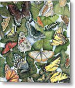 Butterfly Sightings Metal Print