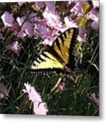 Butterfly Surprise Watercolor Metal Print