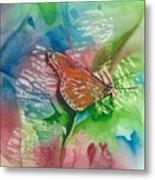 Butterfly W Print Metal Print