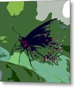 Butterfly Work Number Ten Metal Print