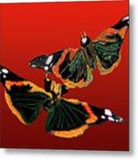 Butterfly1 Metal Print