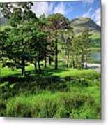 Buttermere Pines Metal Print