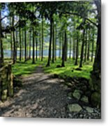 Buttermere Woods Metal Print