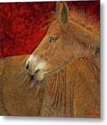 Butterscotch Metal Print