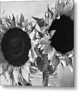 Bw Sunflowers #002 Metal Print