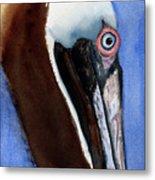 Bwon Pelican Eye Metal Print