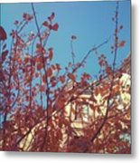 By The Autumn Tree 2 Metal Print