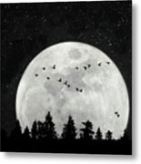 By The Light Of The Silvery Moon - Birds  Metal Print