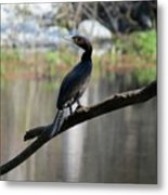 By The River Metal Print