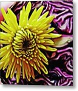 Cabbage And Mum Metal Print