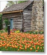Cabin In The Tulips Metal Print
