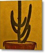 Cabo Cactus Metal Print