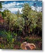 Cactus And Bird Metal Print