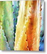 Cactus Detail #1 Metal Print