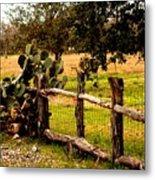 Cactus Fence Line Metal Print