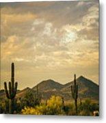 Cactus Morning Metal Print
