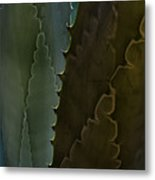 Cactus Outlined Metal Print
