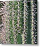 Cactus Thorns Metal Print
