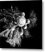 Cactus With Palo Verde Metal Print