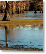 Caddo Lake 2016 Metal Print