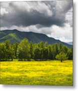 Cades Cove Great Smoky Mountains National Park Tn - Fields Of Gold Metal Print by Dave Allen