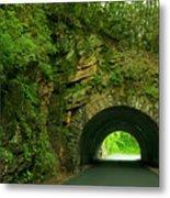 Cades Cove Tunnel Metal Print