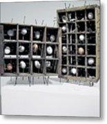 Caged Virgin Metal Print