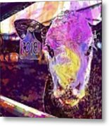 Calf Cow Maverick Farm Animal Farm  Metal Print